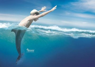 anv-swimming-academy-dolphin-small-98091