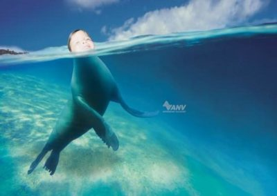 anv-swimming-academy-seal-small-41033